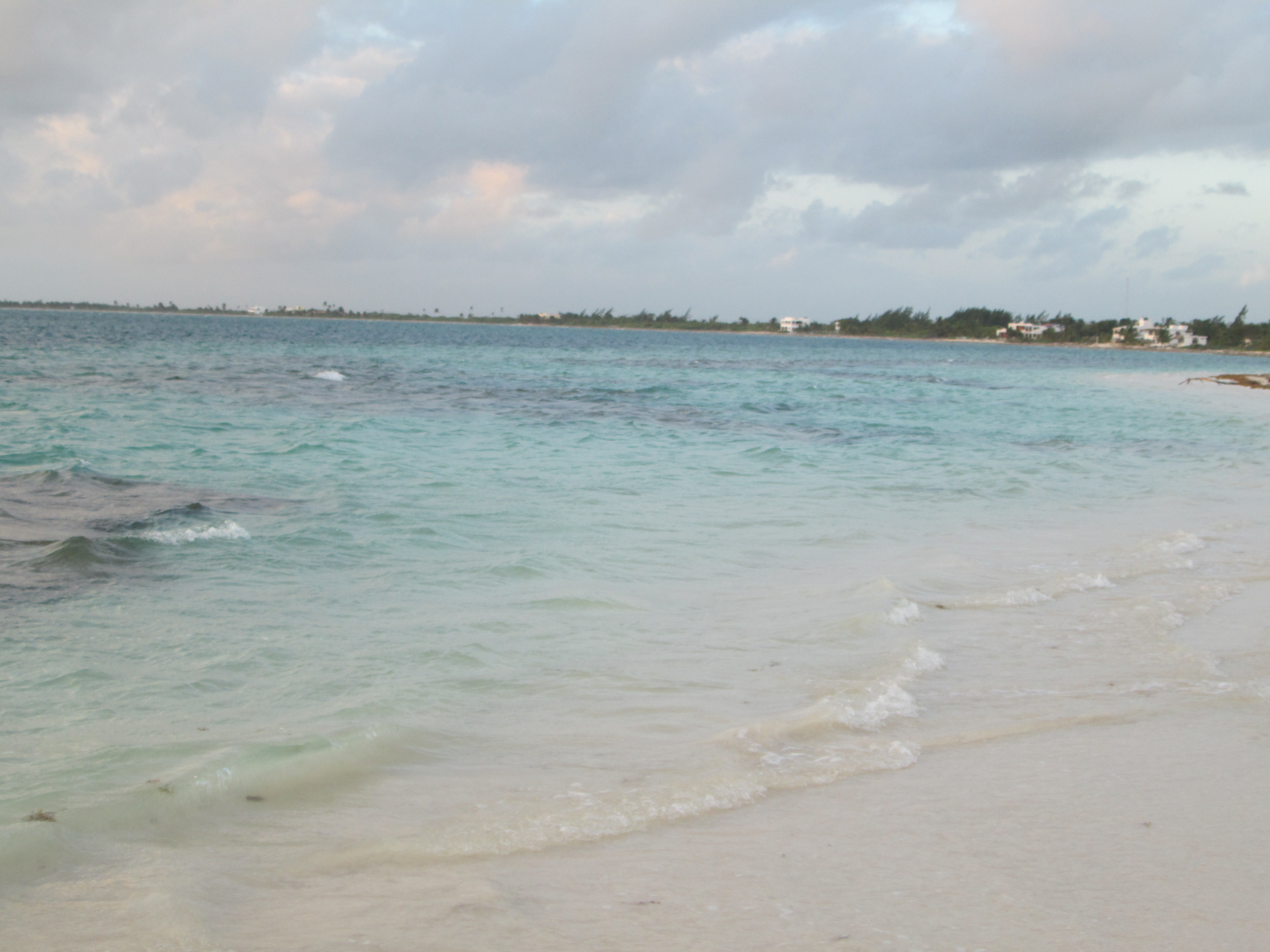 Coconut Beach Placer