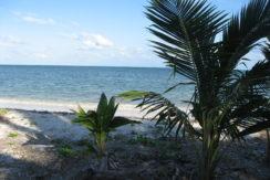Coco Playa Costa Maya