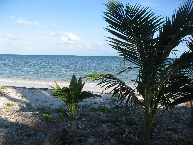 """Casona Costa Maya """"Ocean Grove"""""""