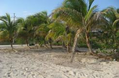 Rio Indio beachfront lot