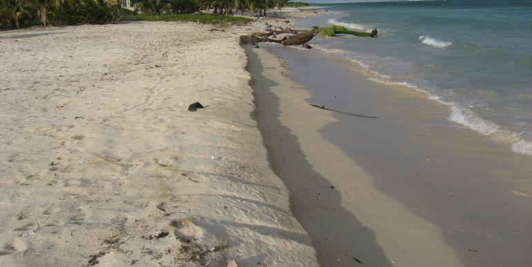 C19 - Rancho AH - Post Beach Cleanup No.