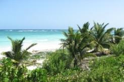 Costa Maya's Sapphire Beach