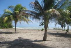 Rio Indio Tuttle Beach