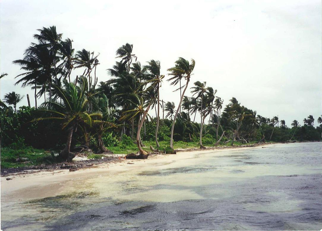 Uvero Costa Maya
