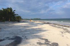 Placer Sands Costa Maya