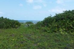 Chahuay Beach Costa Maya