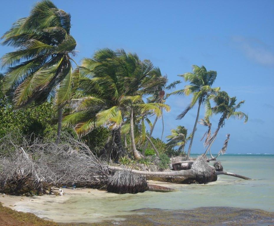 Casona Costa Maya Beach