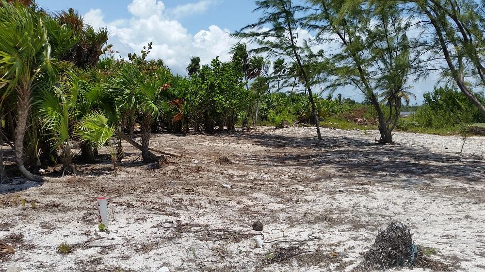 Costa Maya Paradise Found