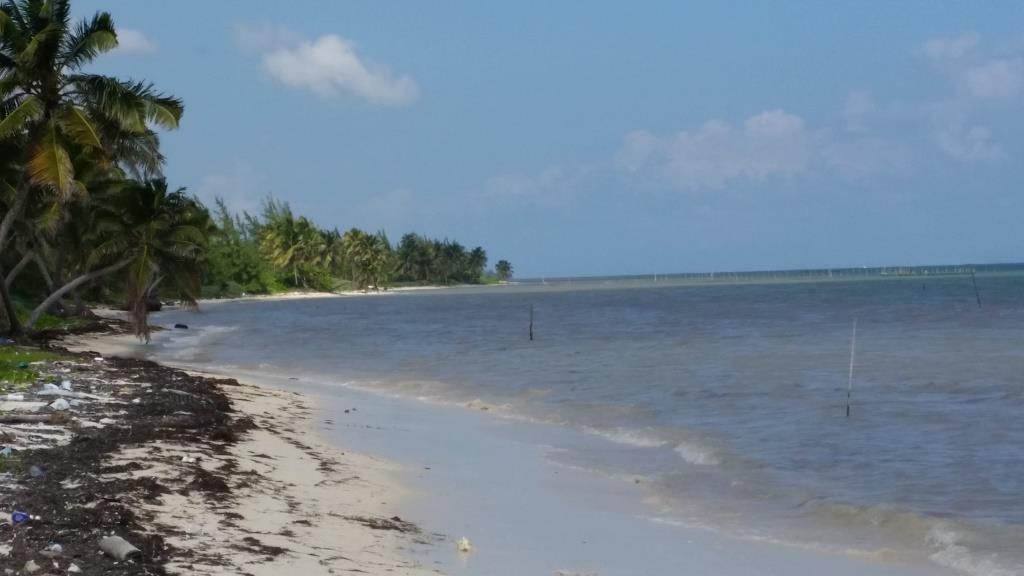 Casona Costa Maya Uvero