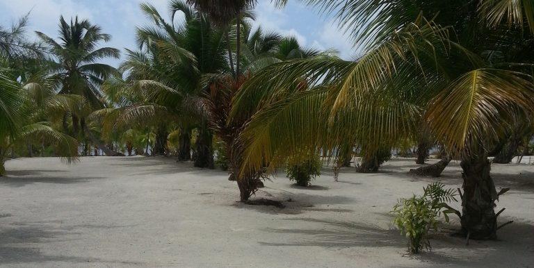 Mexico juni-juli 2013 147 (002)