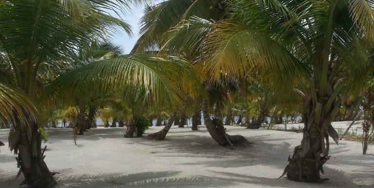 Mexico juni-juli 2013 148 (002)