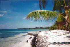 Beachfront Villa Lot