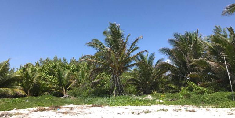 Lot Beach 6