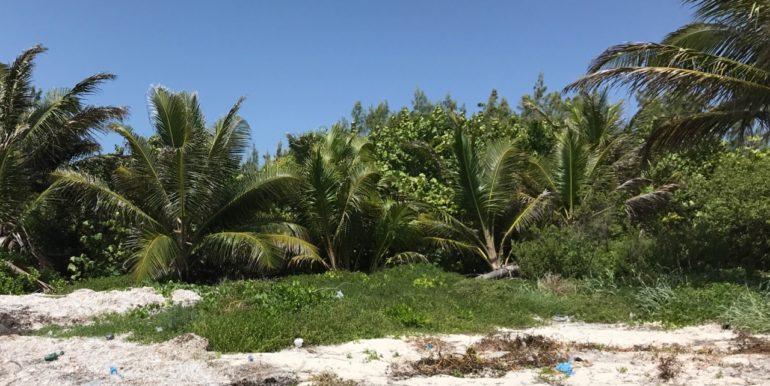 Lot beach – Version 3