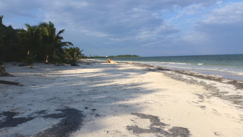 Caribbean Dream Costa Maya