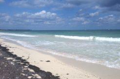 Caribbean Resort Property