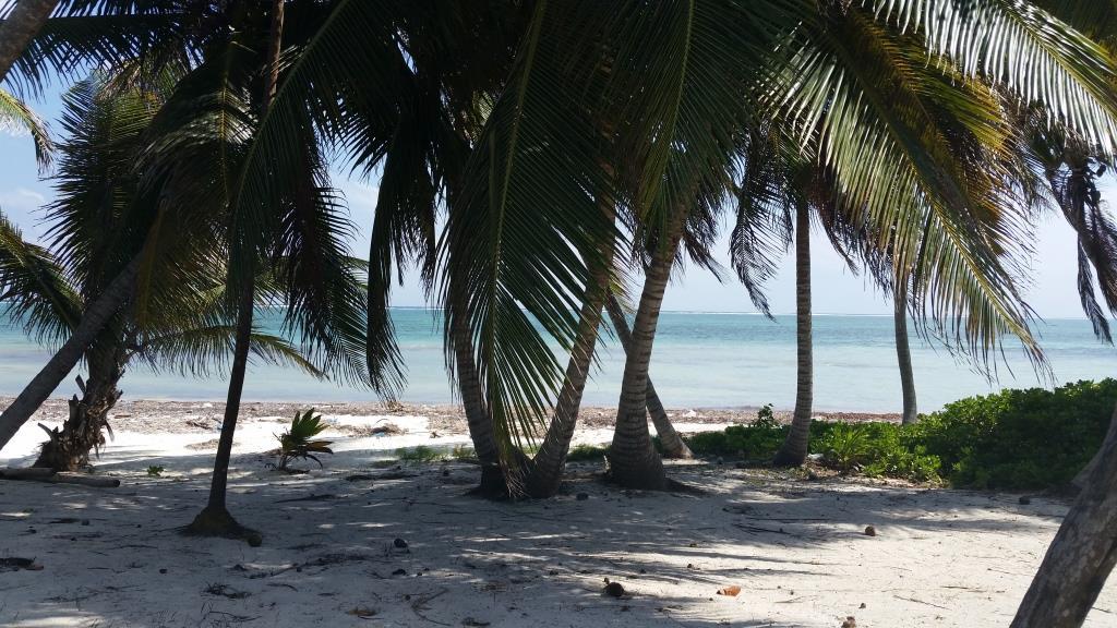 La Casona Beach