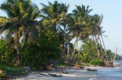 Diamond Beach Uvero